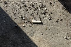 Cigarette Butt with ashes concrete floor. cigarette butts with ashes closeup stock photo