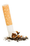 Cigarette butt isolated on white background Royalty Free Stock Photos