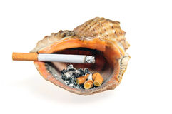 Cigarette butt in the shell ashtray Stock Photos