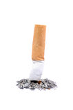 A cigarette butt on white Stock Images