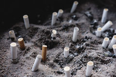 Cigarette butts on ashes, liked a graveyard, smoking kills concept, selective focus. Cigarette butts on ashes, liked a graveyard, smoking kills concept,selective Stock Images