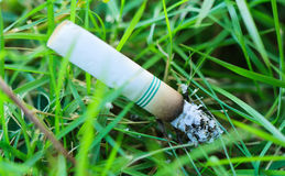Cigarette butts discarded. In green grass stock photography