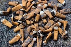 Cigarette butts Stock Image