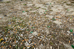 Cigarette butts on the lawn of the city in the spring Royalty Free Stock Photo
