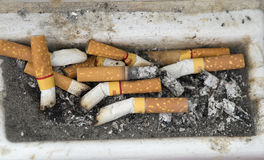 Cigarette butts. Many cigarette butts close up in ash receiver Royalty Free Stock Image