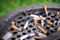 Cigarette butts stuck in dirty ash Royalty Free Stock Image