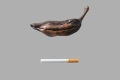 Cigarette cause of wither banana. On gray background Stock Photos