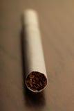 Cigarette closeup Royalty Free Stock Photo