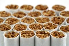 Cigarette de fumée Photographie stock libre de droits