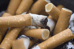 Cigarette filters Royalty Free Stock Images