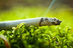 Cigarette in grass Stock Images