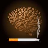 Cigarette and human brain stock photo