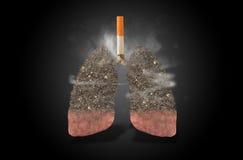 Cigarette, lungs full of ash, concept. Cigarette with lungs full of ash, health concept stock photo