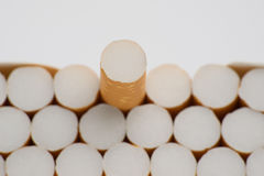Cigarette one. One special cigarette in box Stock Image