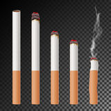 Cigarette Set Vector. Realistic Cigarette Butt. Different Stages Of Burn.  Illustration. Burning Classic Smoking. Cigarette Stock Photo