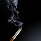 Cigarette smoke stock image