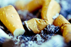 Cigarette stubs and ash. A closeup of cigarette butts, snubbed and left in a tray of ash Stock Photos