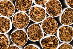 Cigarette tobacco Stock Images