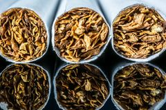 Cigarette macro with a tobacconist with a reflection in a black glass background royalty free stock image