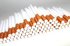 Cigarette Tubes on white background Royalty Free Stock Images