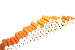 Cigarette Tubes on white background Stock Images