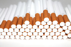 Cigarette Tubes on white background Stock Photography
