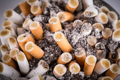Cigaretter i ett askfat Royaltyfri Bild