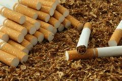 Cigaretter och tobak Royaltyfria Foton