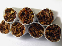Cigarettes-1. Six cigarettes,close up Royalty Free Stock Photography