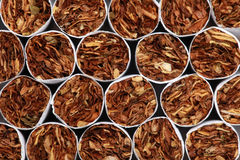 Free Cigarettes Stock Image - 30229361