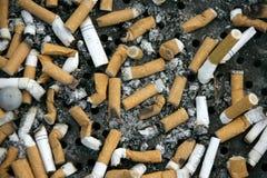 Cigarettes. Close up shot of cigarettes butt Stock Photos