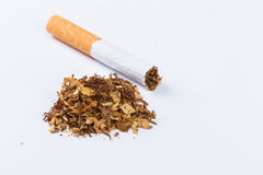 Cigarettes. A bunch of cigarettes, smoking habit royalty free stock photo