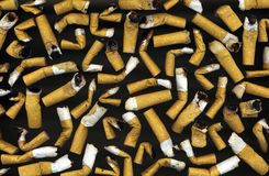 Cigarettes butt Stock Image
