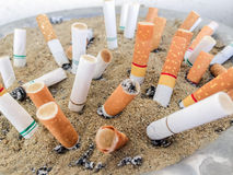 Cigarettes butts Stock Photos