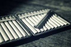 Cigarettes in cigarette case Stock Image