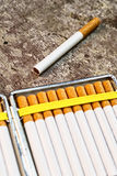 Cigarettes in cigarette case Stock Photography