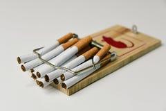 Cigarettes dans une souricière à clapet image stock