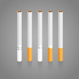 Cigarettes. Five different realistic cigarettes with slight shadow in vector illustration Royalty Free Stock Photos