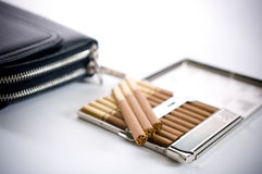 Free Cigarettes In Cigarette Case And Portmone Stock Images - 13487674