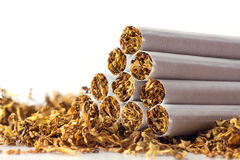 Cigarettes in loose tobacco, close up against white Royalty Free Stock Photo