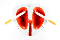 Cigarettes and lungs Stock Images