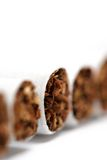 Cigarettes macro. Over white, highkey with very shallow dof Royalty Free Stock Image