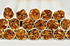 Cigarettes. Macro shot of cigarettes with white background Royalty Free Stock Photo