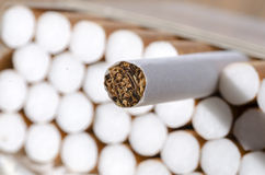 Cigarettes in a pack. Tobacco in cigarettes close up Royalty Free Stock Photo