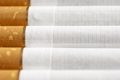 Cigarettes in a row. Cigarettes in perspective on plain surface macro shot Stock Photography