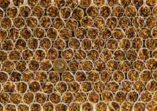 Cigarettes and sleeve. Background of a large Number of cigarettes and one sleeve Royalty Free Stock Photo