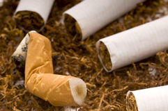 Cigarettes and tobacco Stock Photography