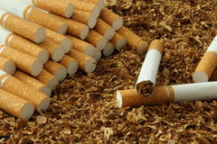 Cigarettes and tobacco. Picture the cigeret One of them is full of others are blank royalty free stock photos