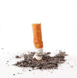 Cigarettes in white background Stock Images