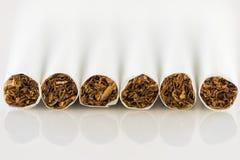 Cigarettes on white background Stock Images
